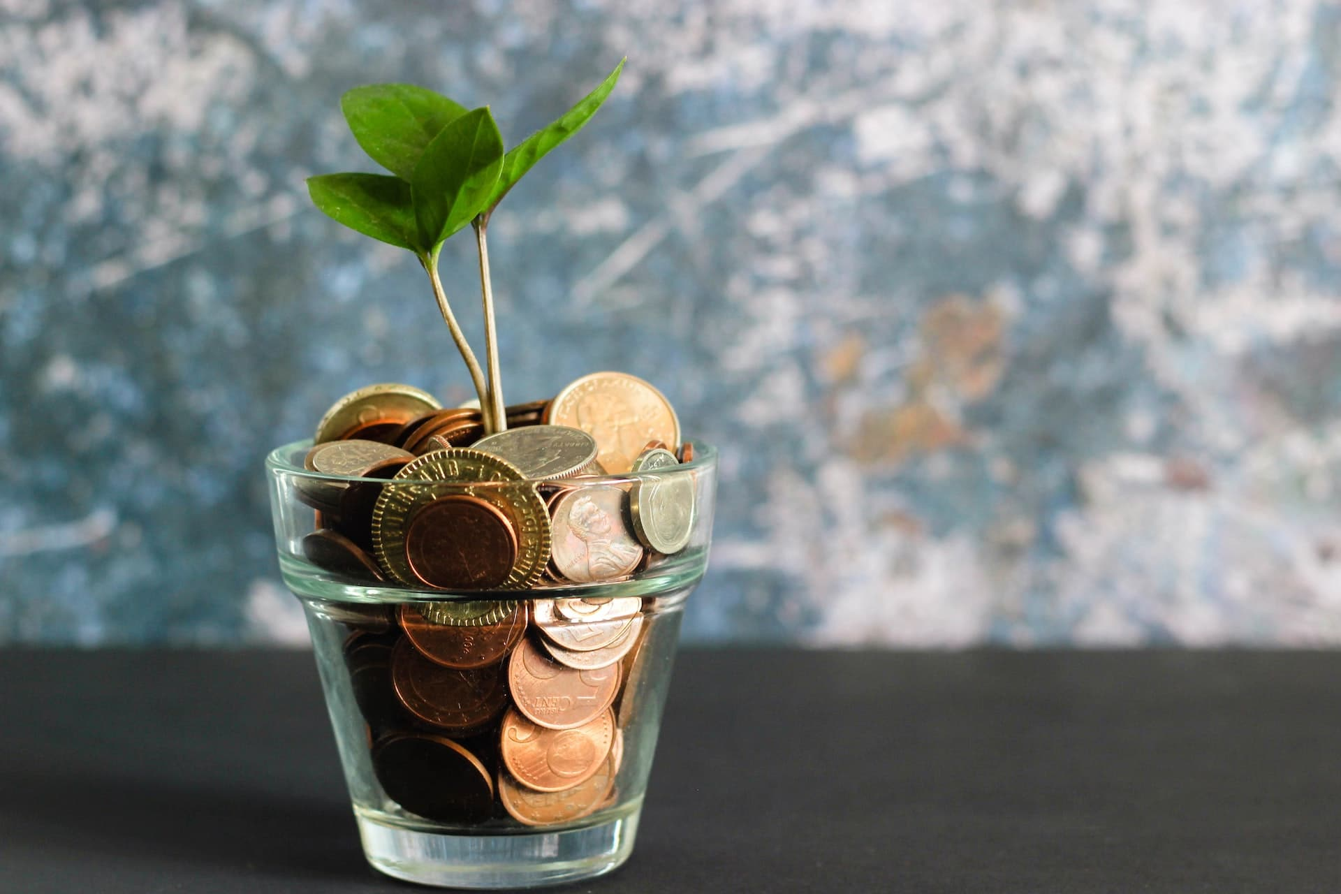 Jar of coins with a plant growing. LAPA Fundraising